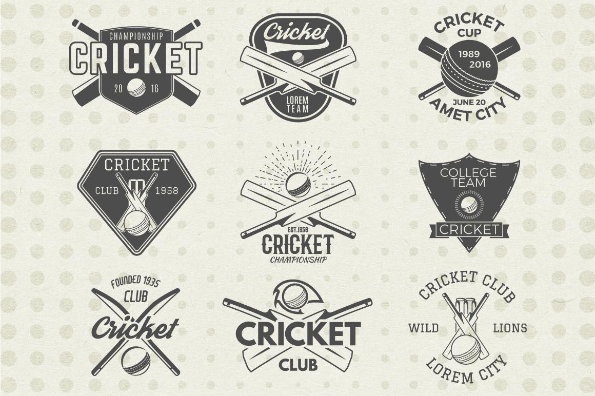 Cricket Badges & Design Elements example image 2