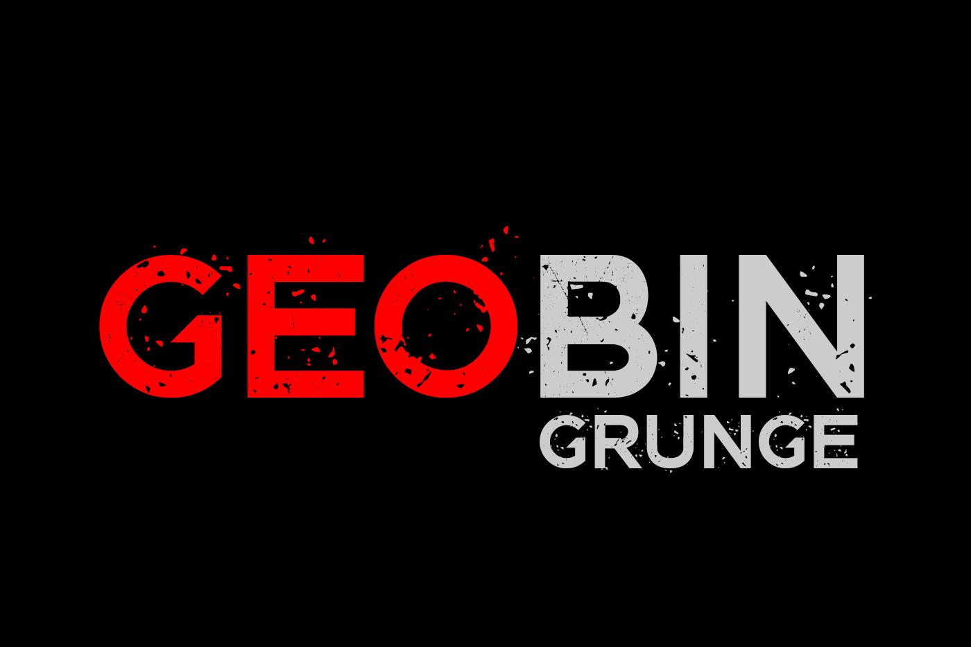GEO BIN Grunge example image 1
