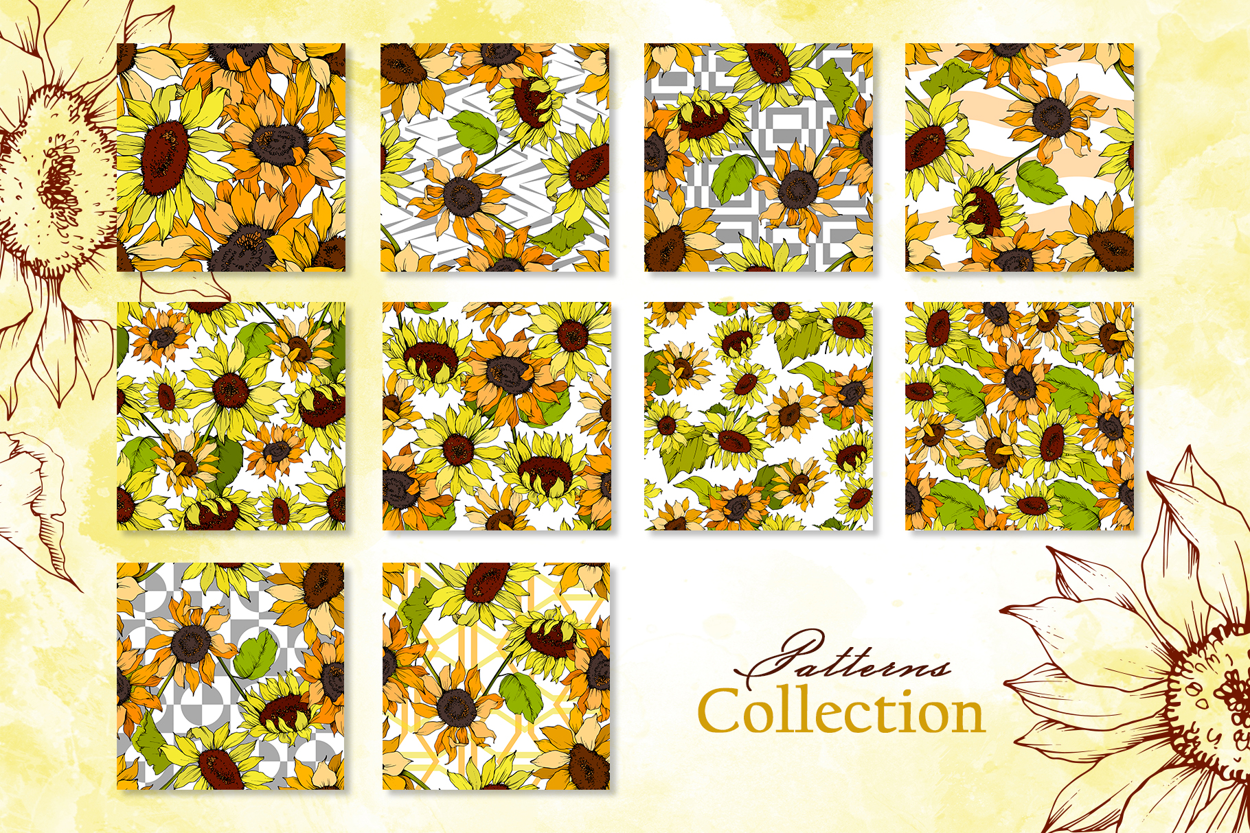 Sunflower Vector Collection example image 3