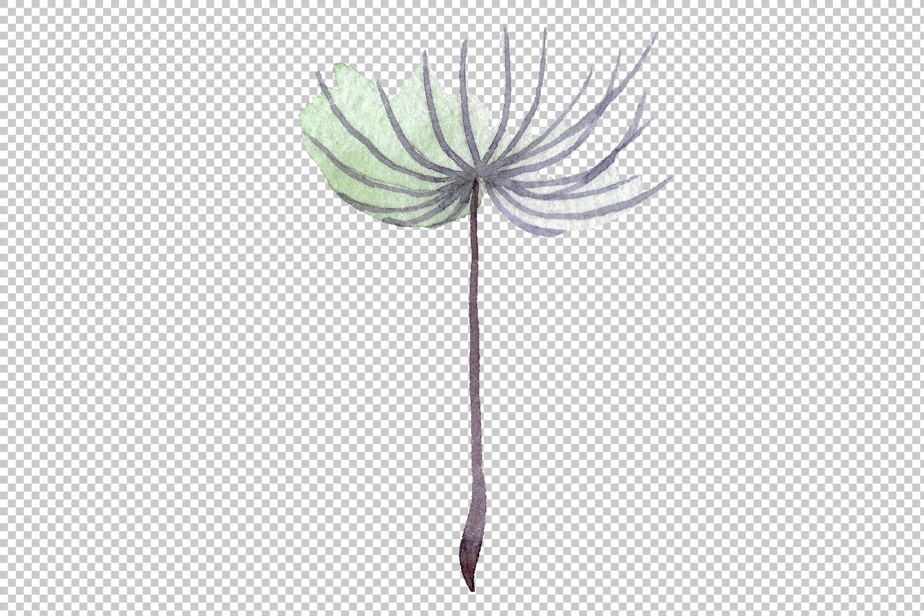 Dandelion summer greeting watercolor png example image 4