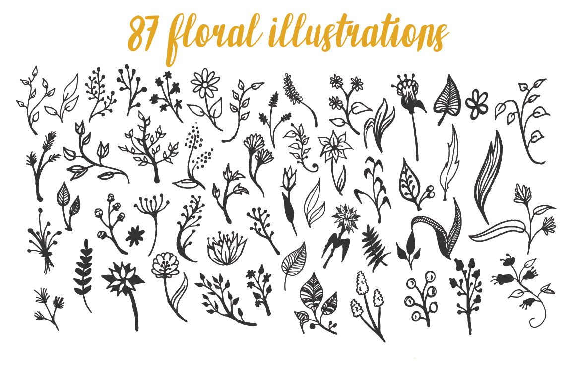 150 Hand-Drawn Floral Illustrations example image 5