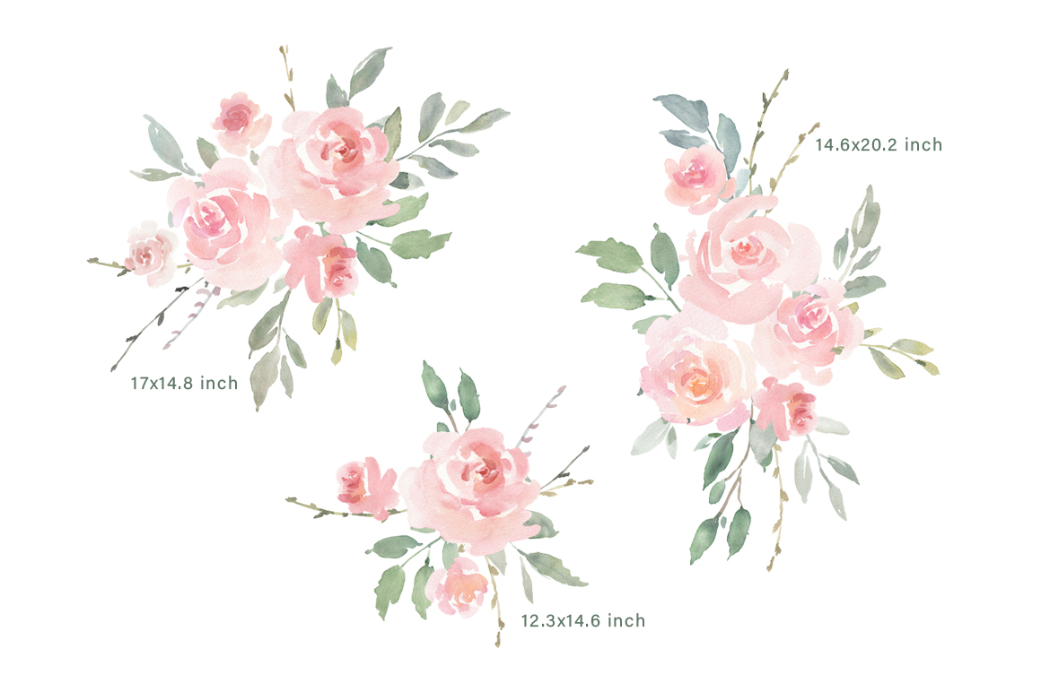 Pink Blush Watercolor Flowers Roses PNG Collection example image 3