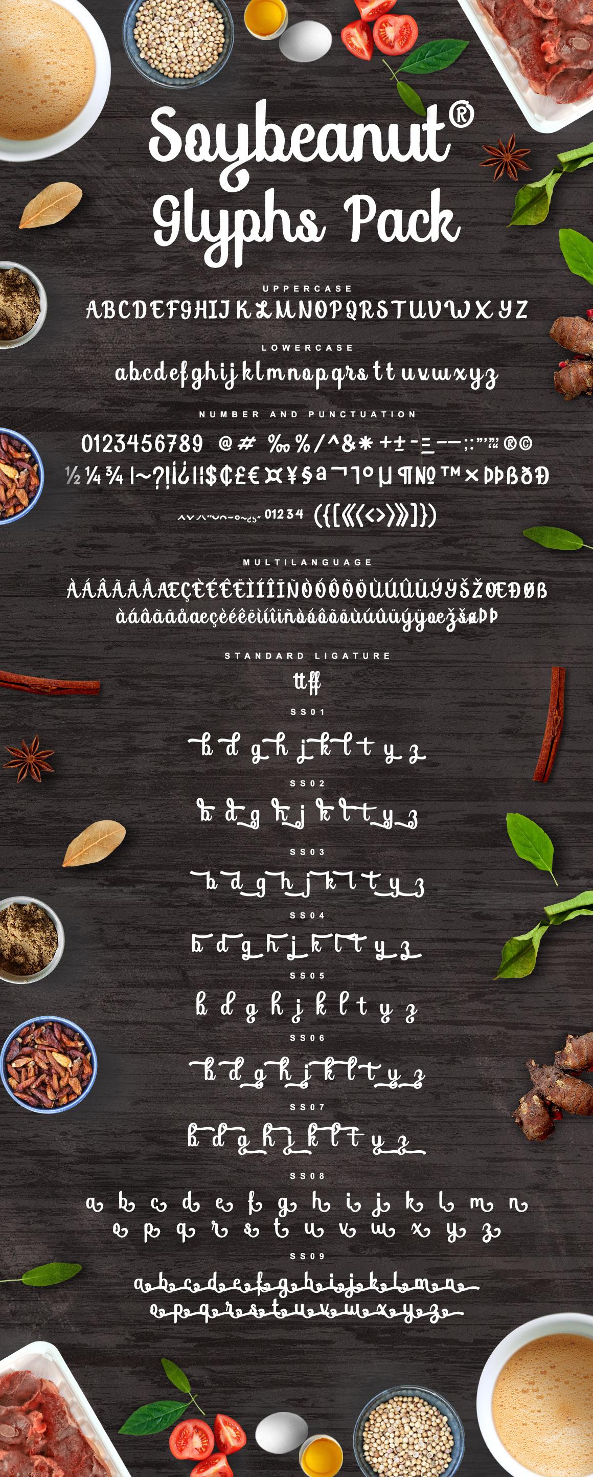 Soybeanut - Brush Script Font example image 10