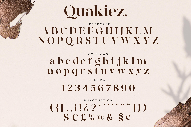 Quakiez - Luxury Modern Serif example image 14