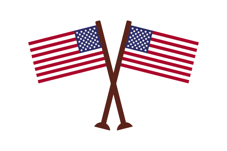 United States flag example image 1