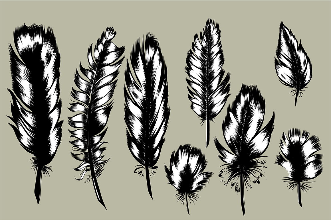 8 Hand Drawn Feathers set. example image 1