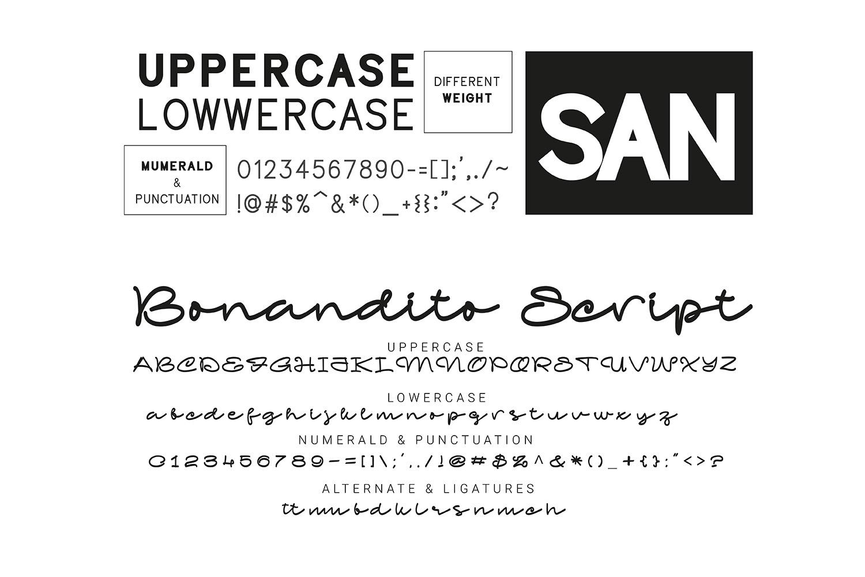 Bonandito Thing Font Duo example image 15