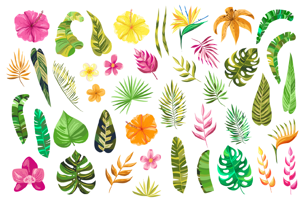 Vector Flower Paradise Set example image 2