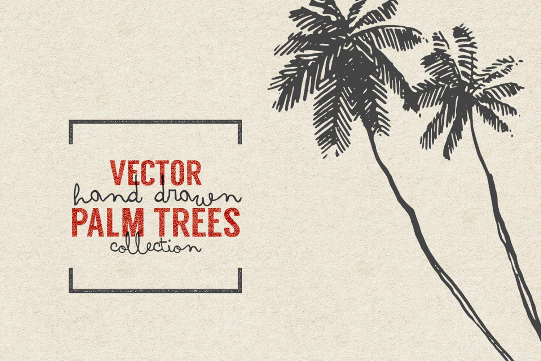 227 hand drawn palms + BONUS example image 5