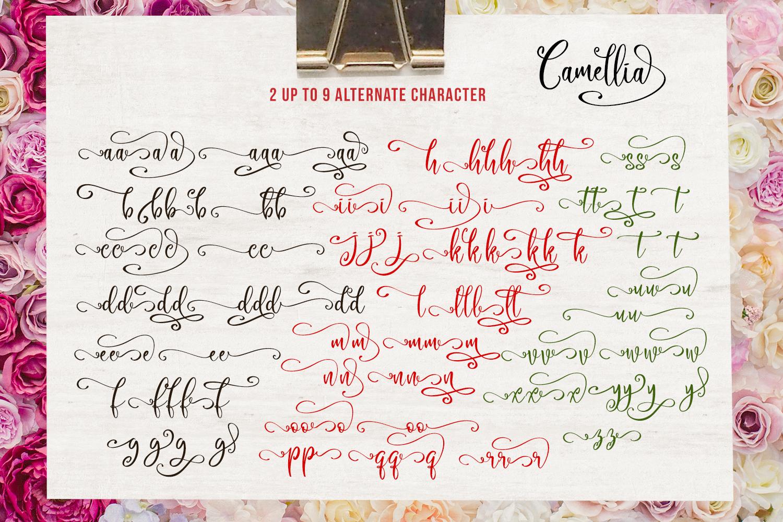 Camellia Script example image 6