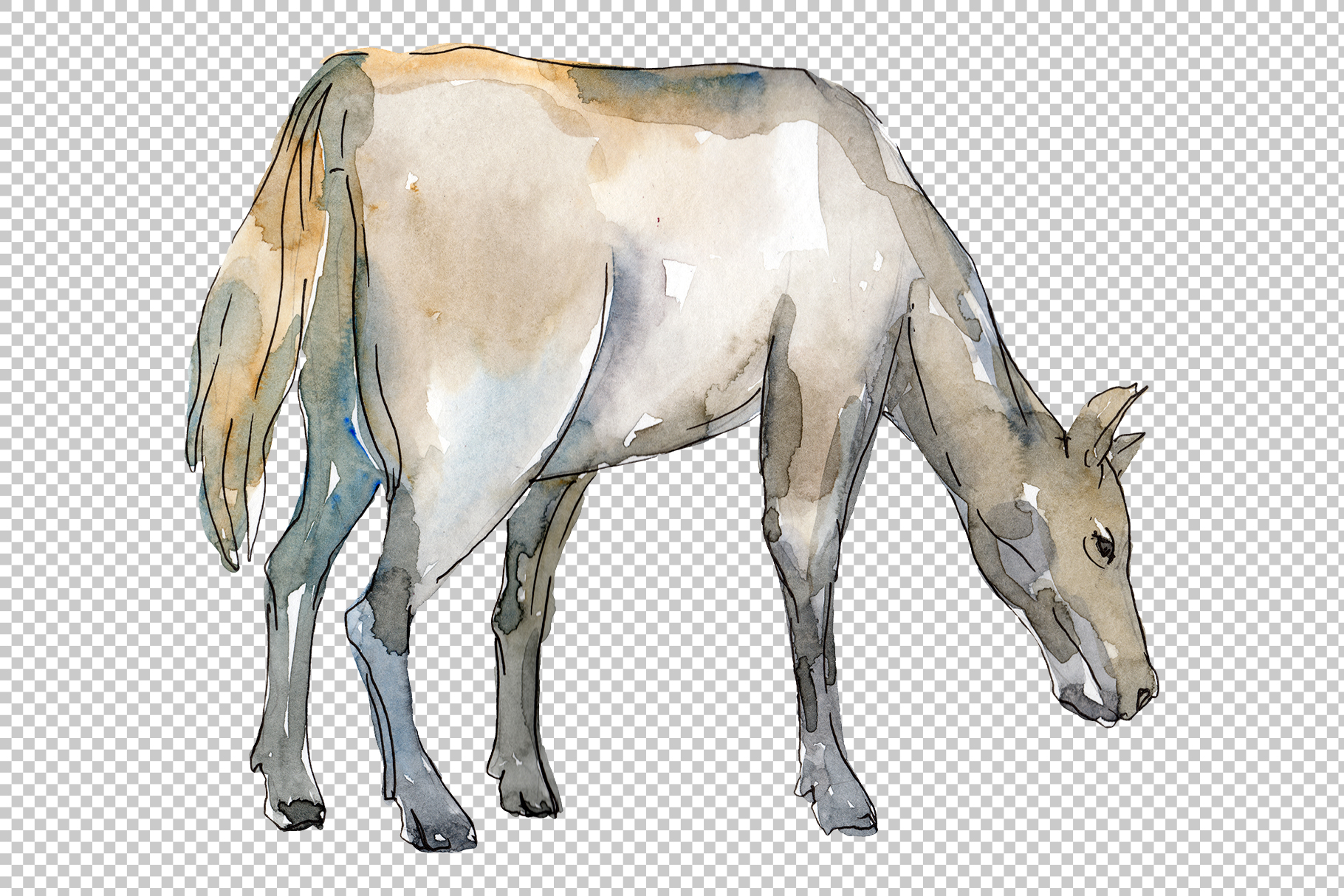 Farm animals Horse, foal Watercolor png example image 6