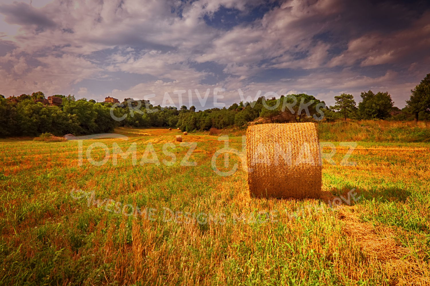 Harvest Field example image 1