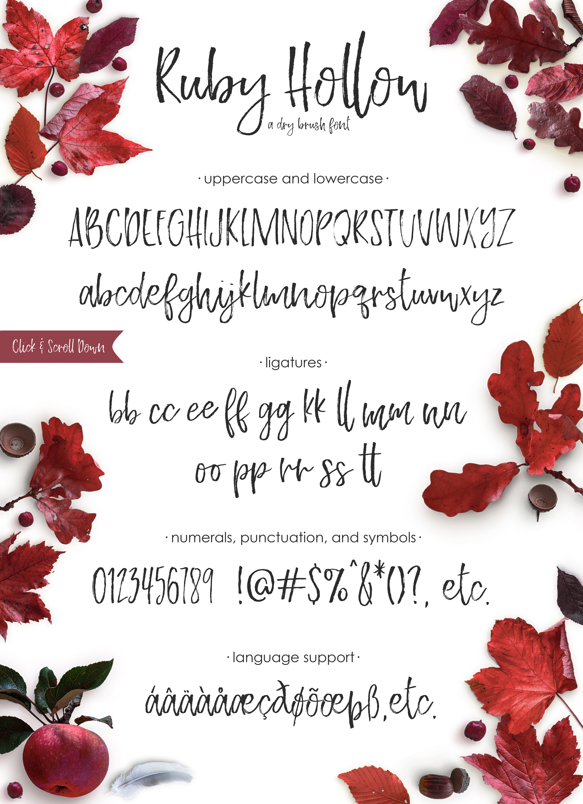 Ruby Hollow, a dry brush font example image 8