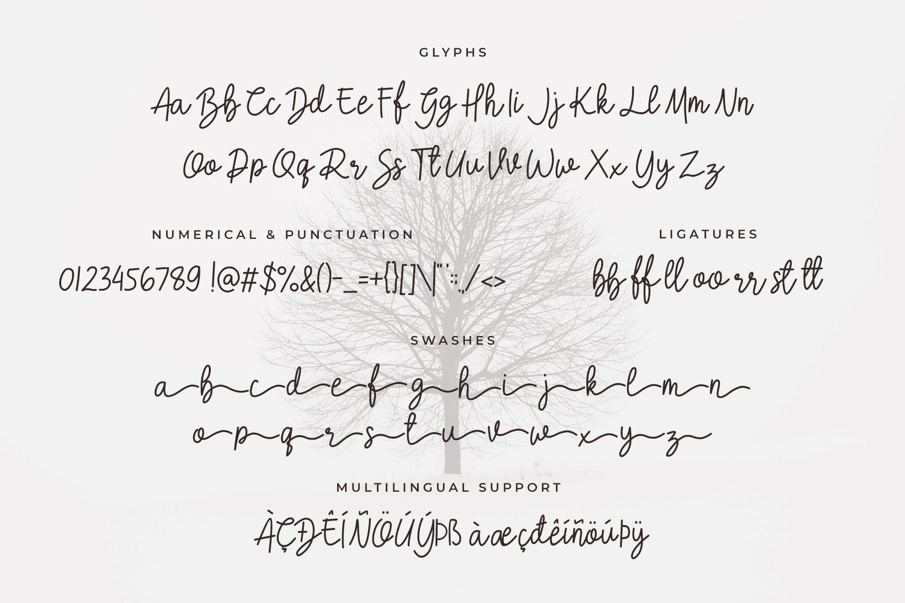 Crellia Script example image 6