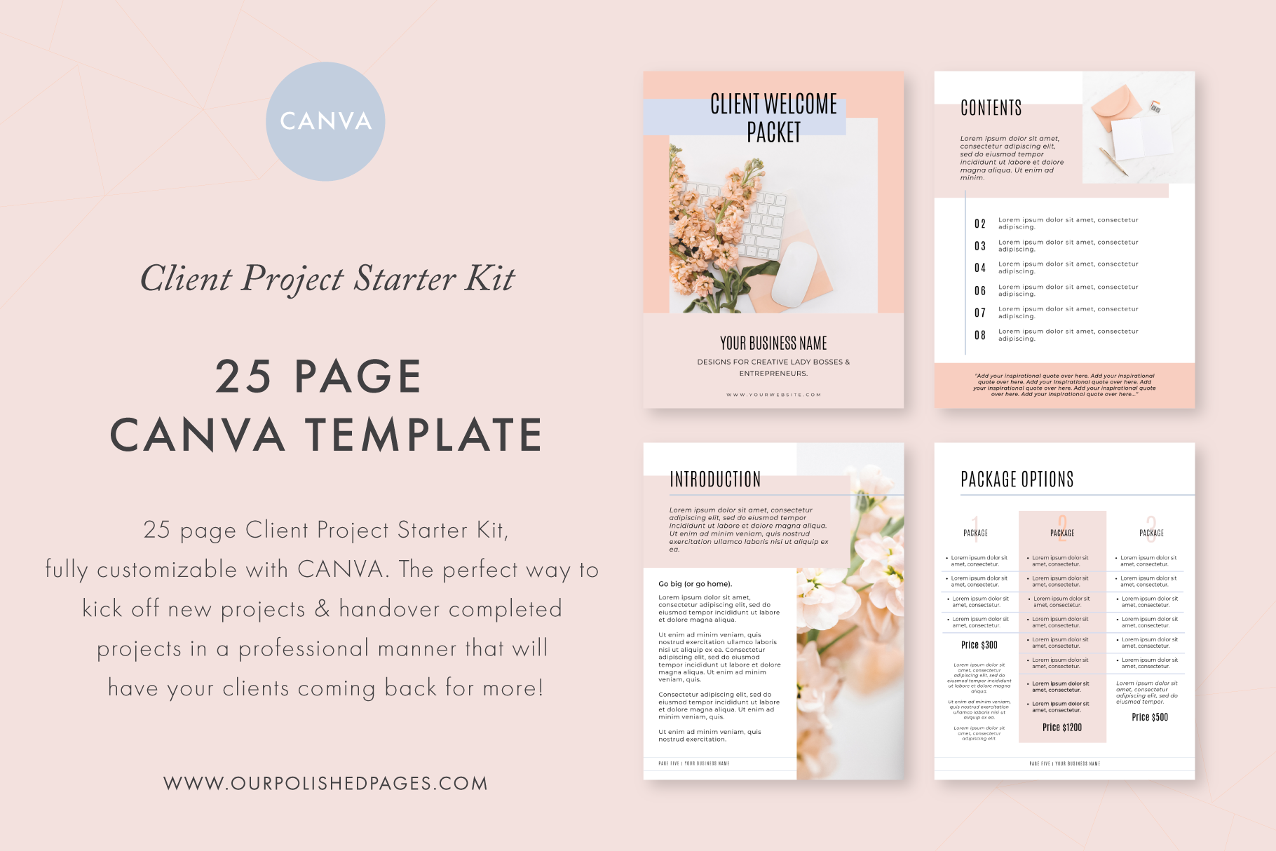 Canva Client Project Starter Kit example image 1