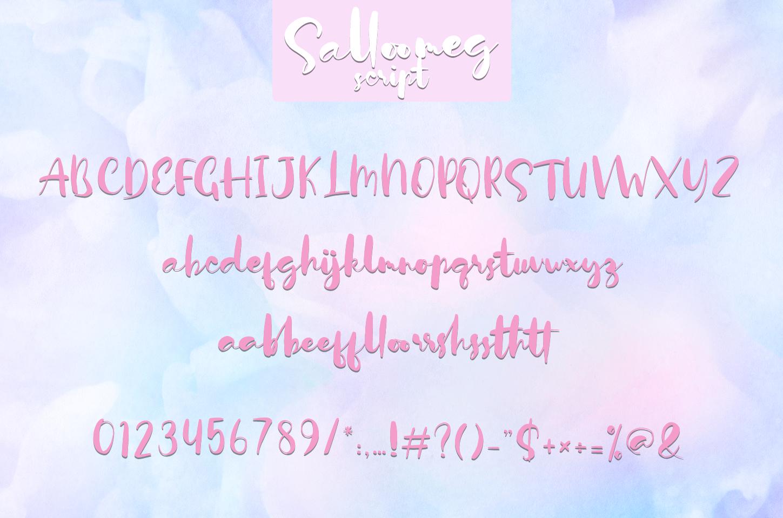 Salloomeg script example image 6