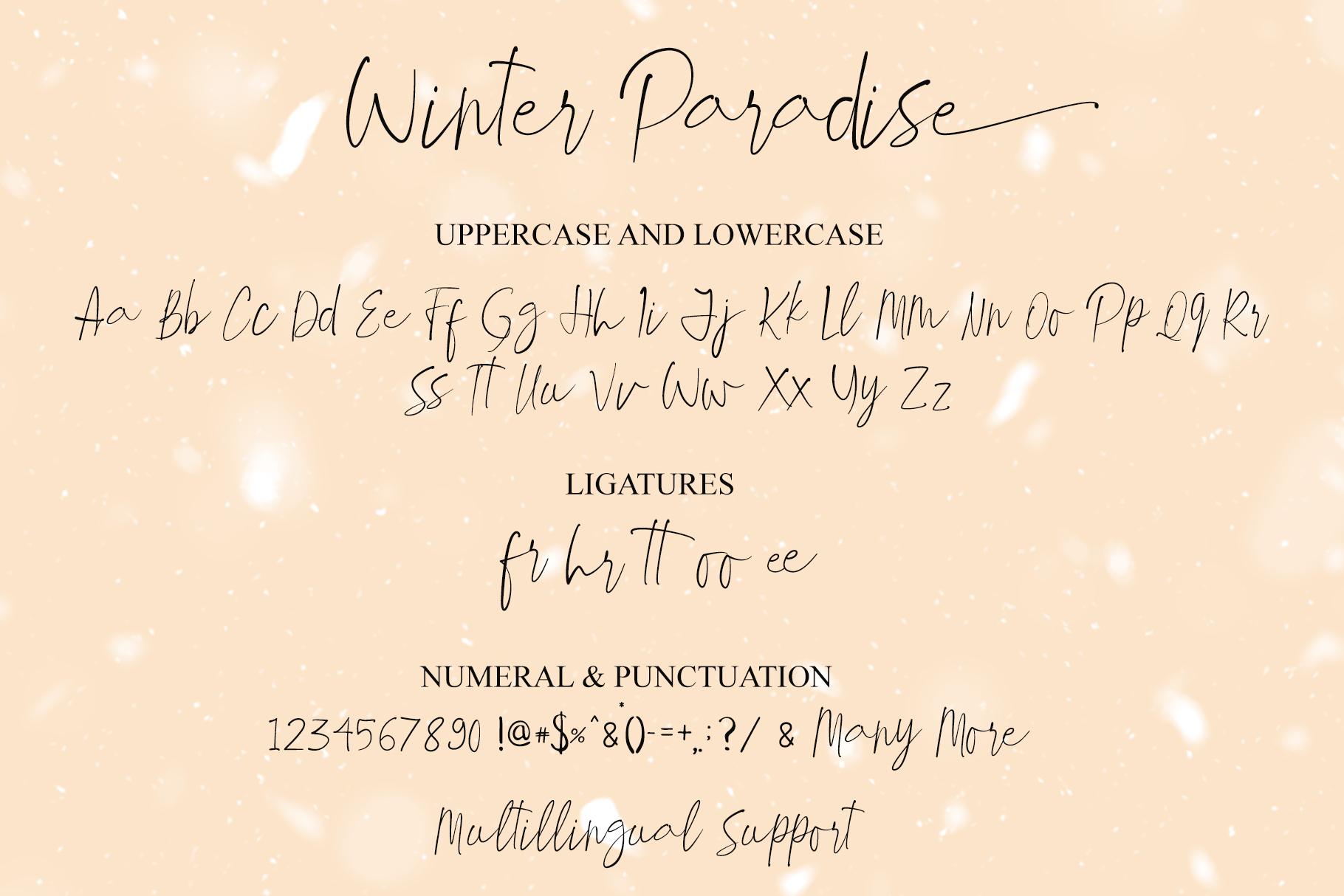 Winter Paradise - Modern Script example image 12