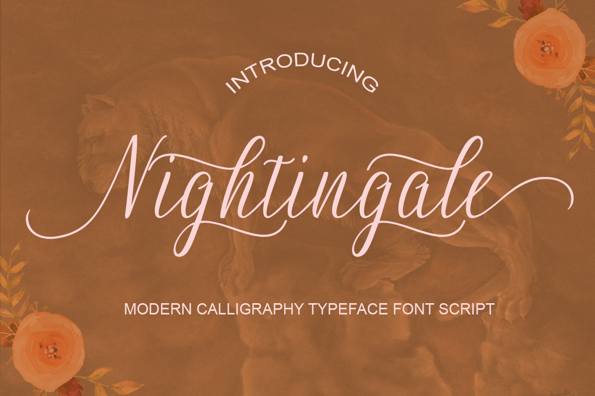 Calligraphy Font Bundles example image 10