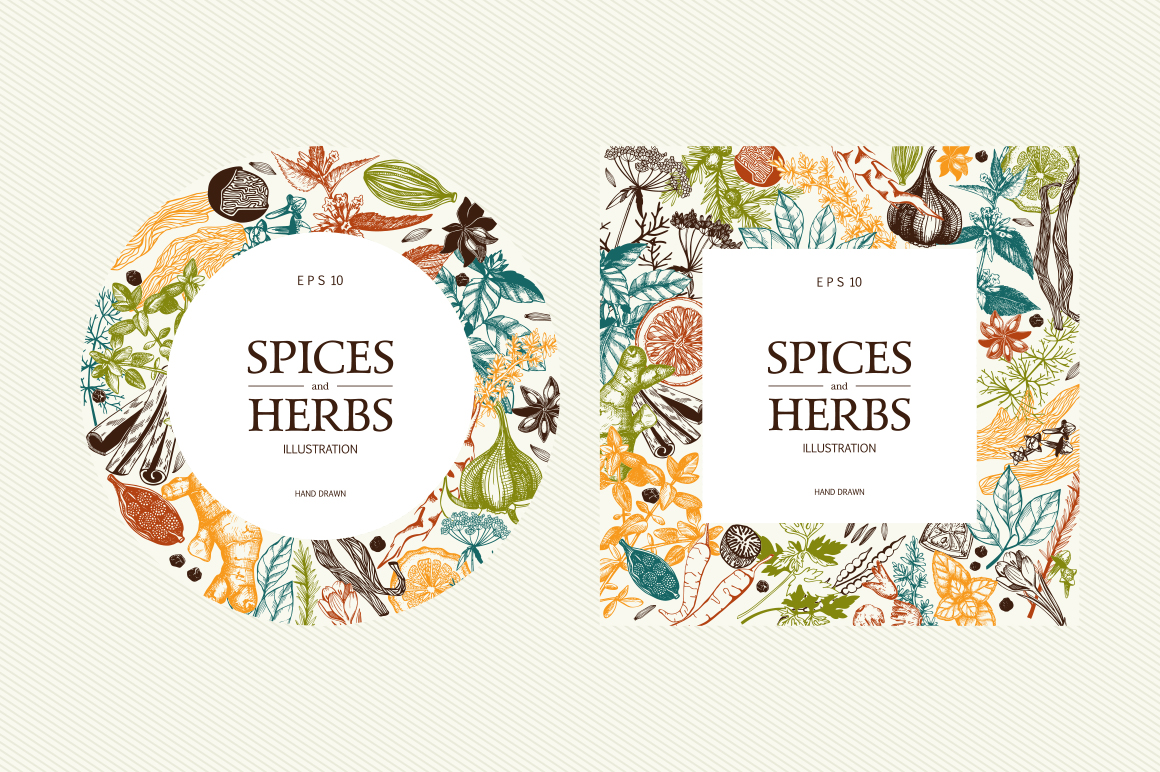 Ink Hand Drawn Spice Collection example image 8