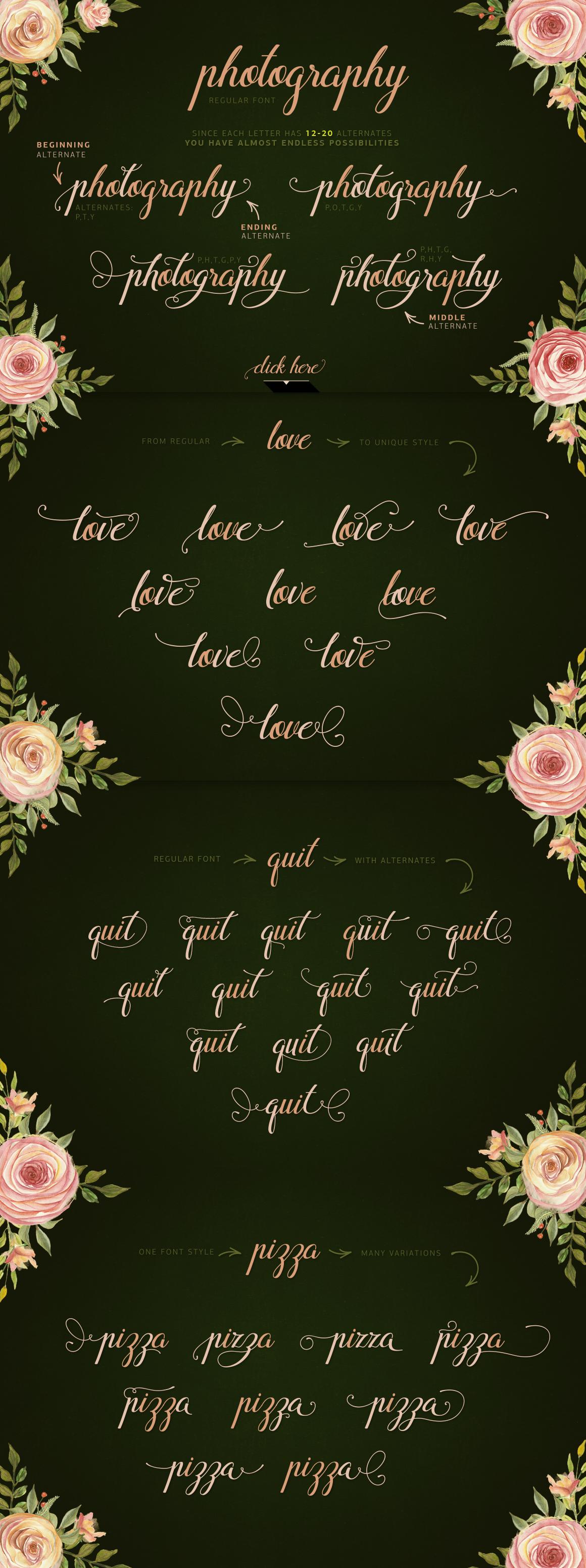 Flamingo - formal script example image 3