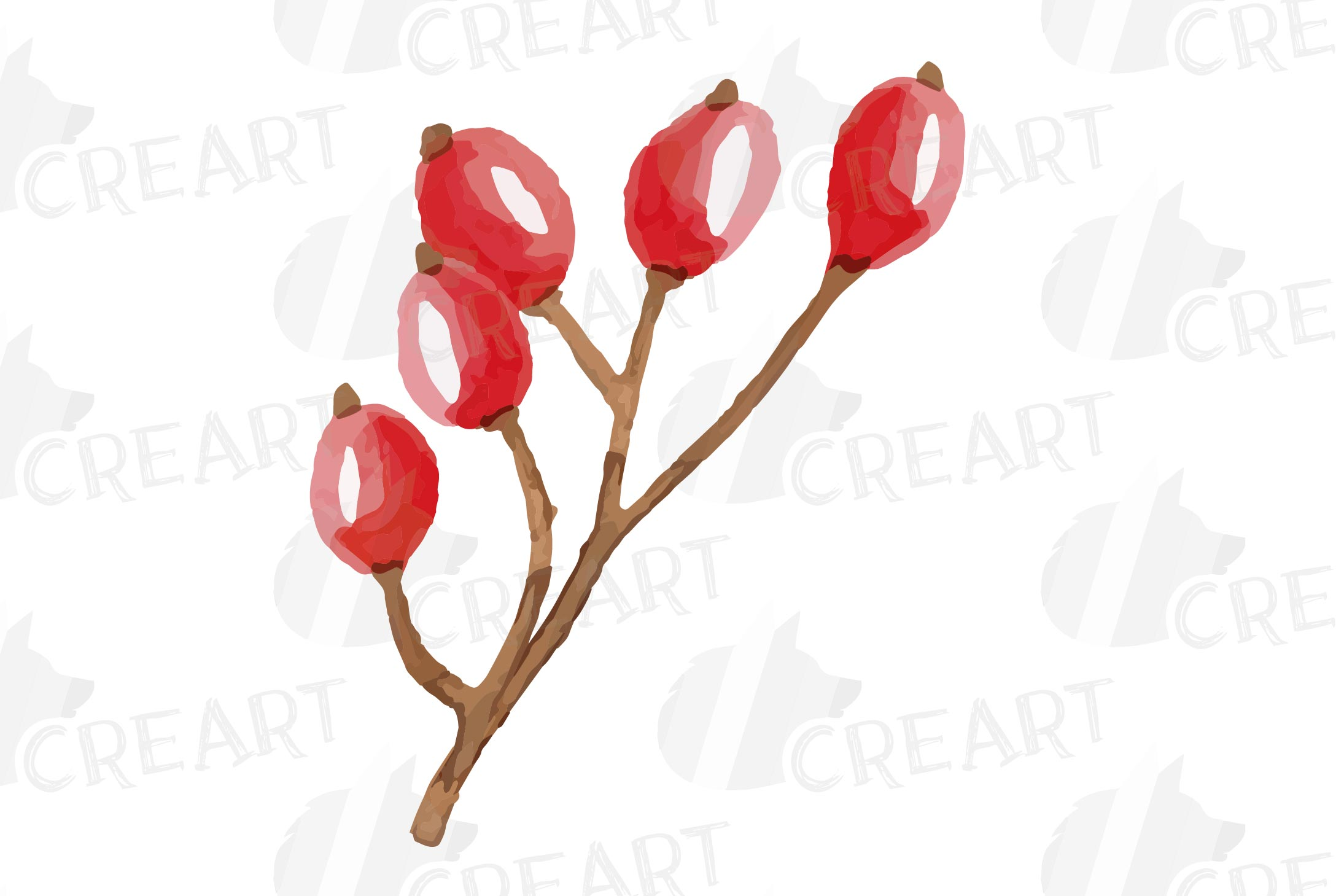 Cotton bolls and fir branch leafy autumn and winter decor example image 25