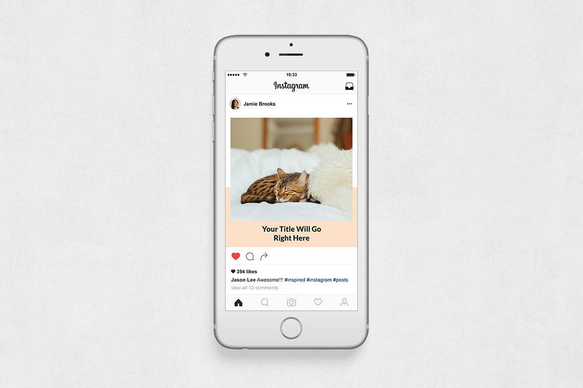 Cats Instagram Posts example image 6