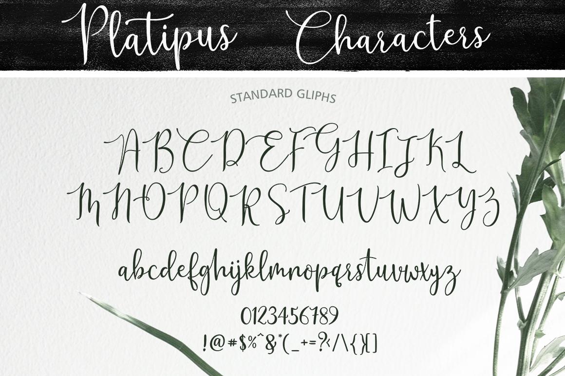 Platipus Script example image 5