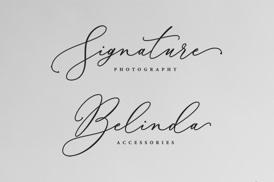 Bellisia Script example image 3