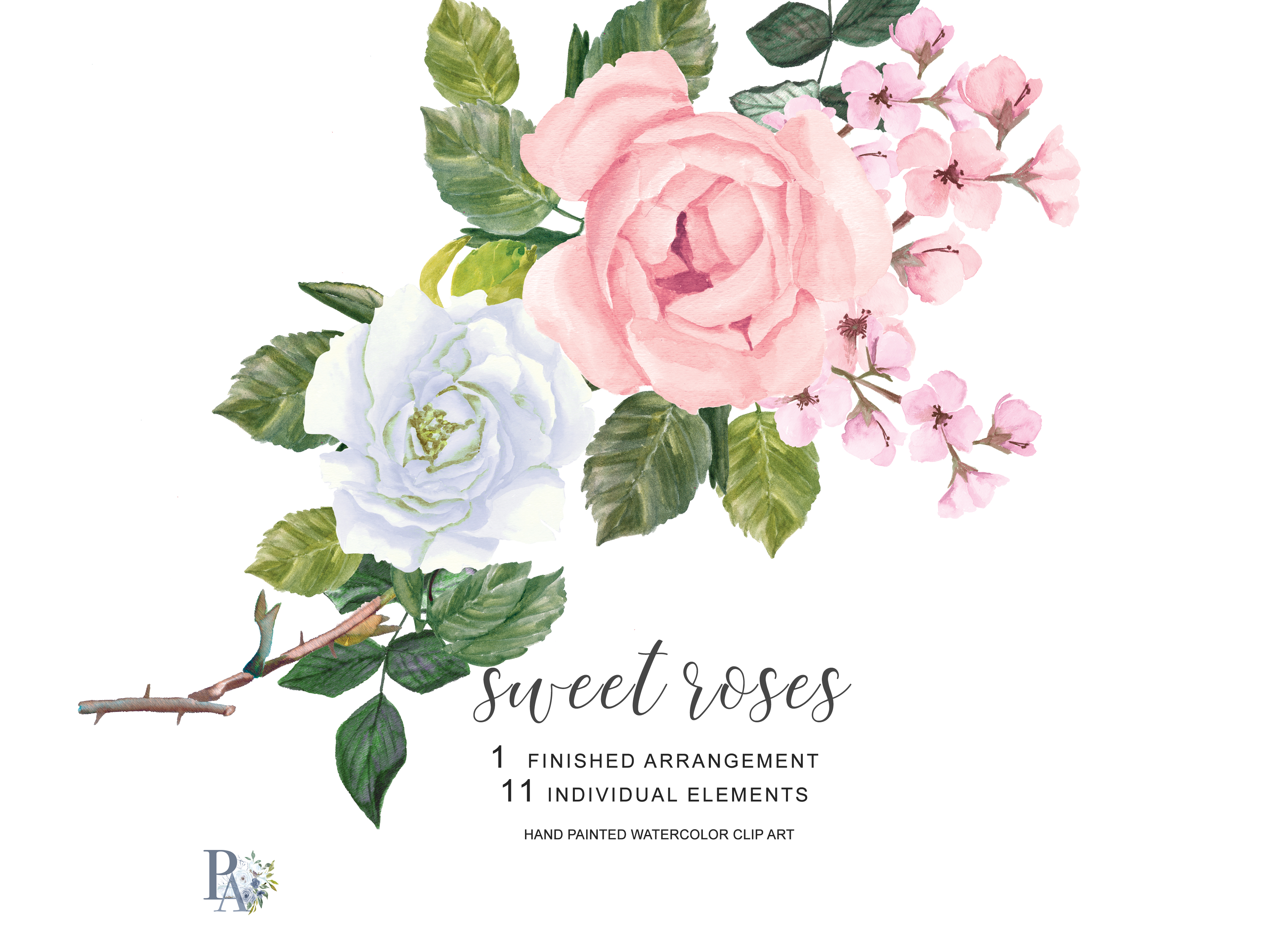 watercolor blush pink and white roses clipart separate elements hand rh designbundles net white rose clipart free white rose flower clip art