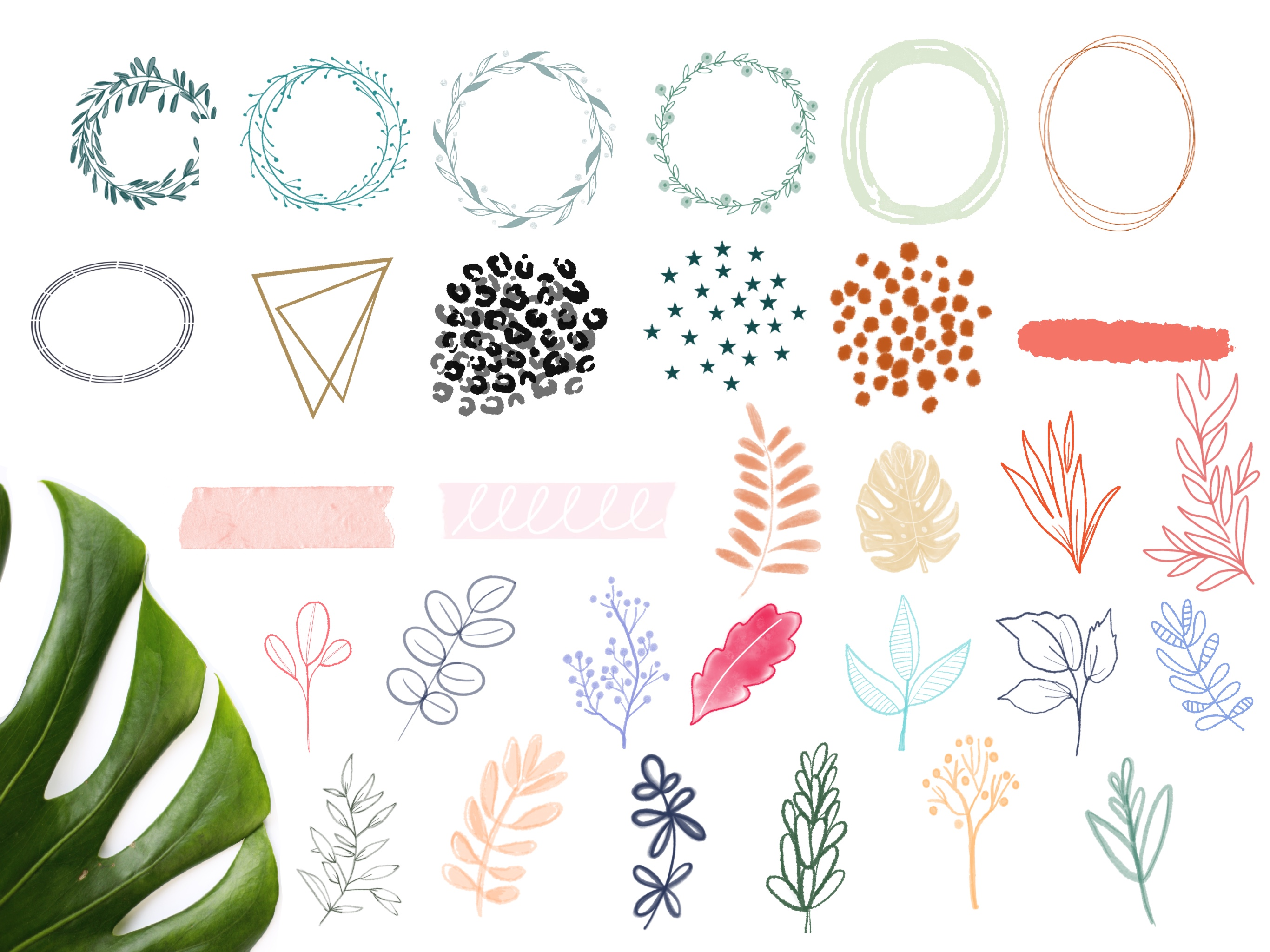 Botanica Watercolour Stamp Brushes for Procreate example image 8