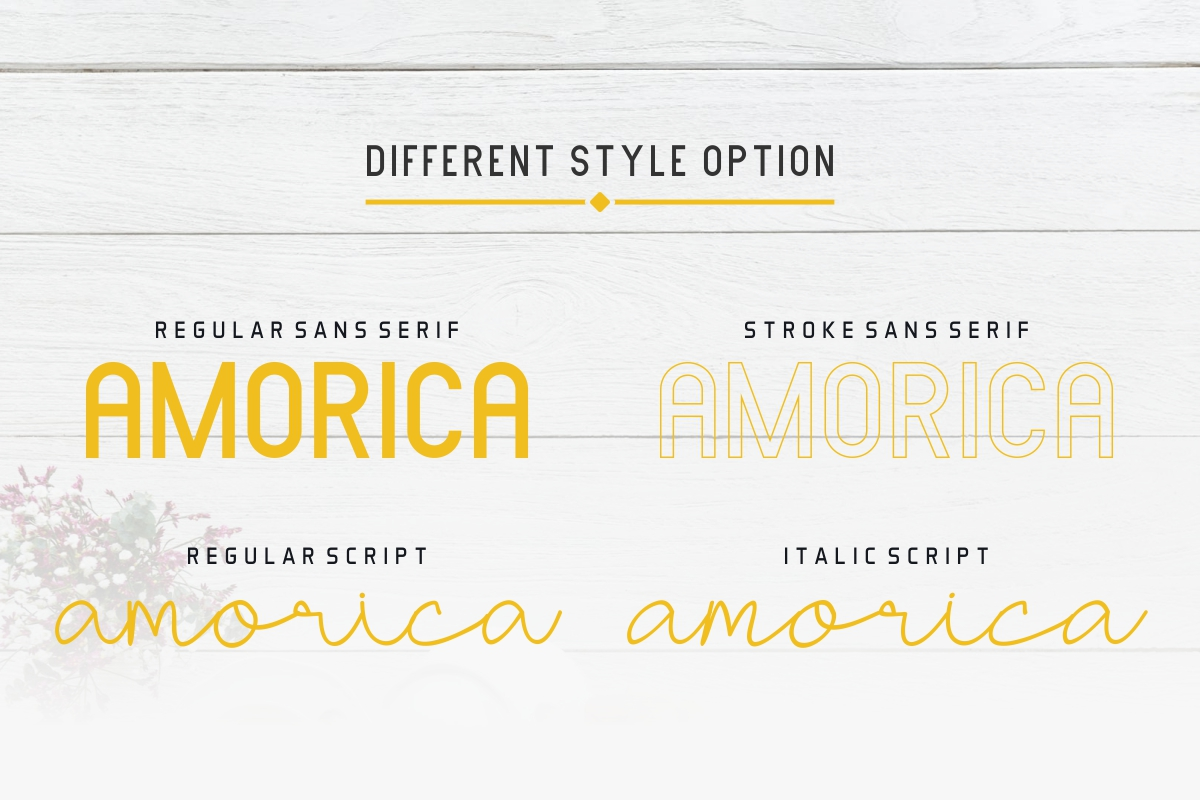AMORICA example image 3