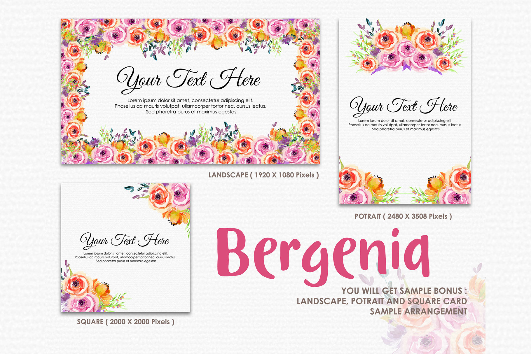 Bergenia - Digital Watercolor Floral Flower Style Clipart example image 4