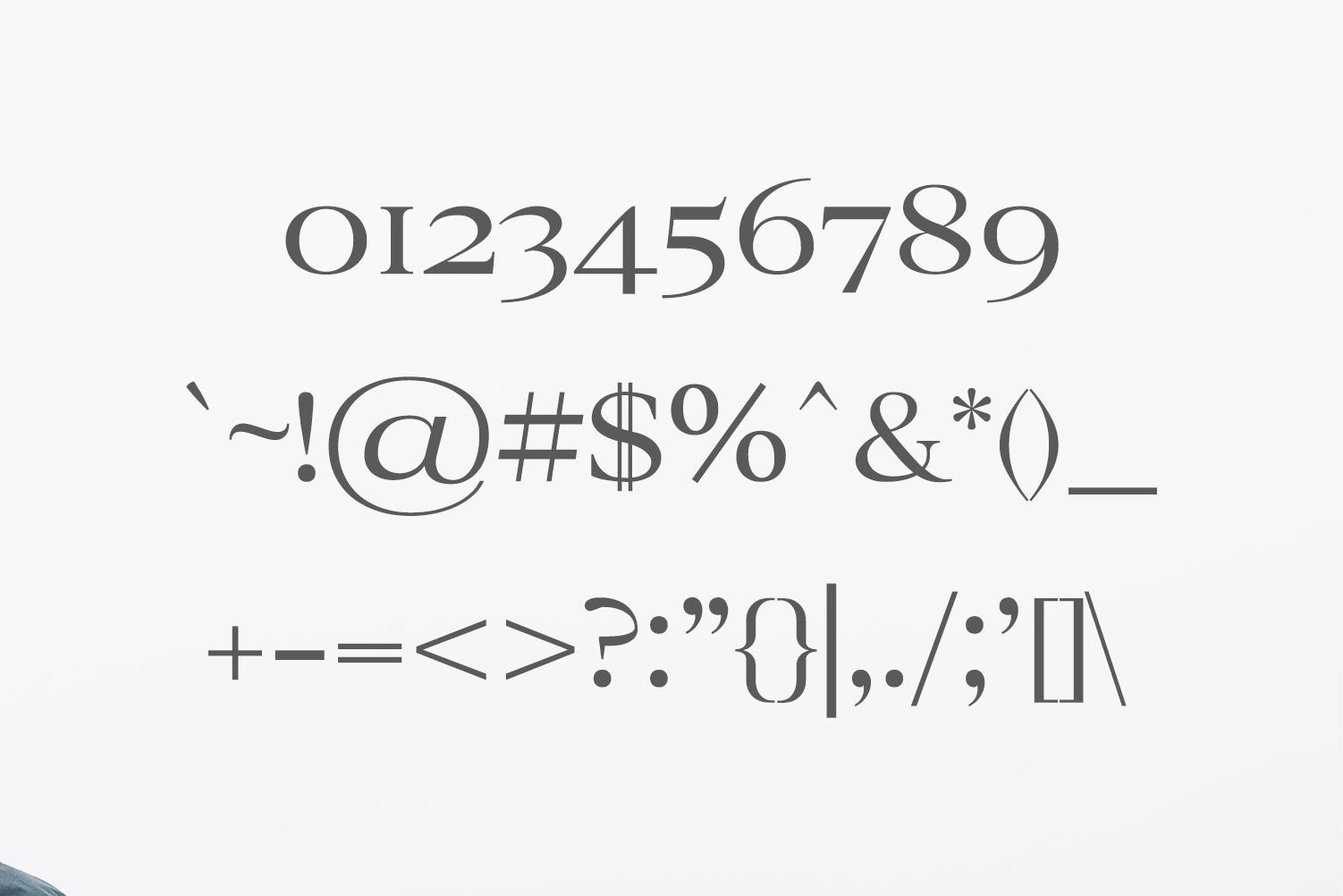 Ammar A Modern Serif Family example image 3