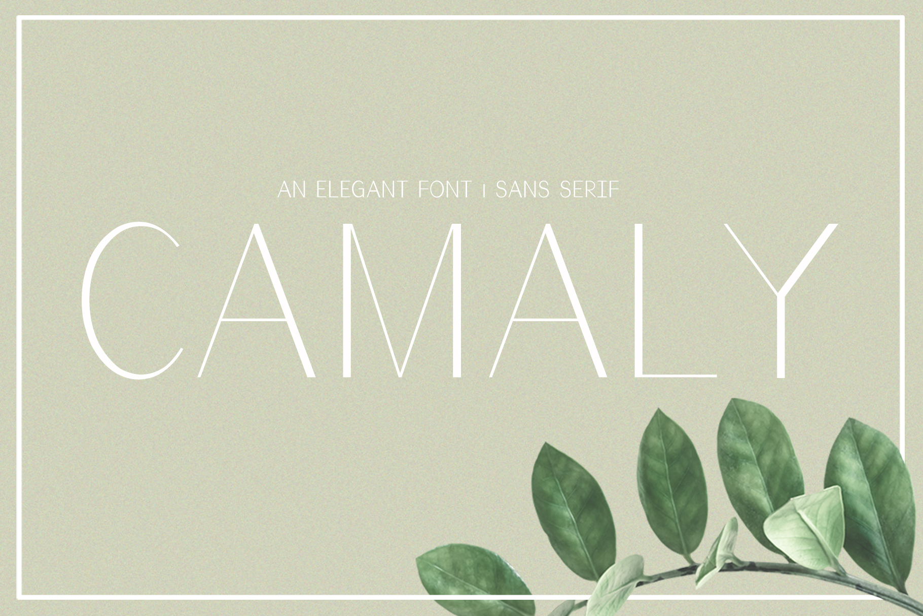 Camaly | san serif example image 1