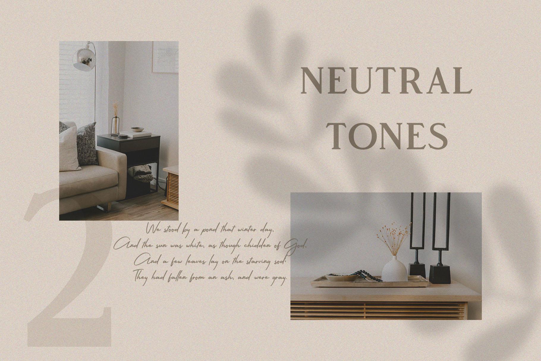 Vendeur - Elegant Serif Font example image 4