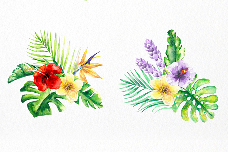 Tropical Floral Watercolor Collection example image 9