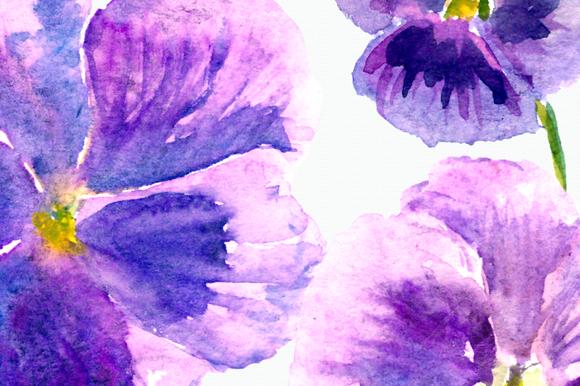 Watercolor Pansies Cip Art Set - Bonus Wreath and Border example image 4