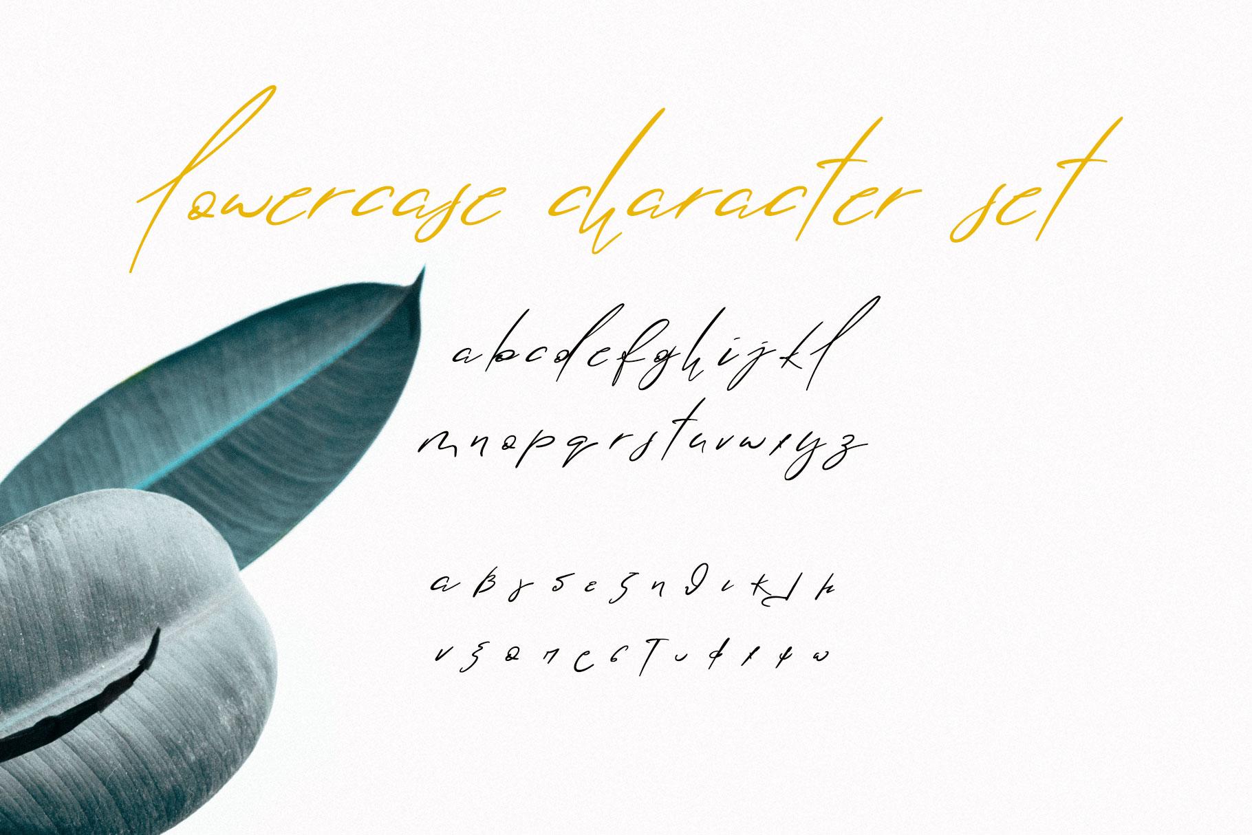 Lolotte Multilingual Signature Font example image 2