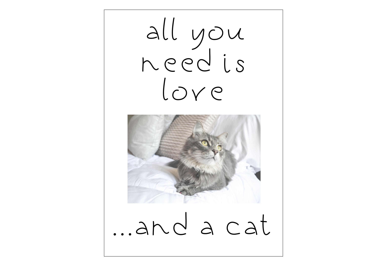 Black Kitten - A Handwritten Font example image 5