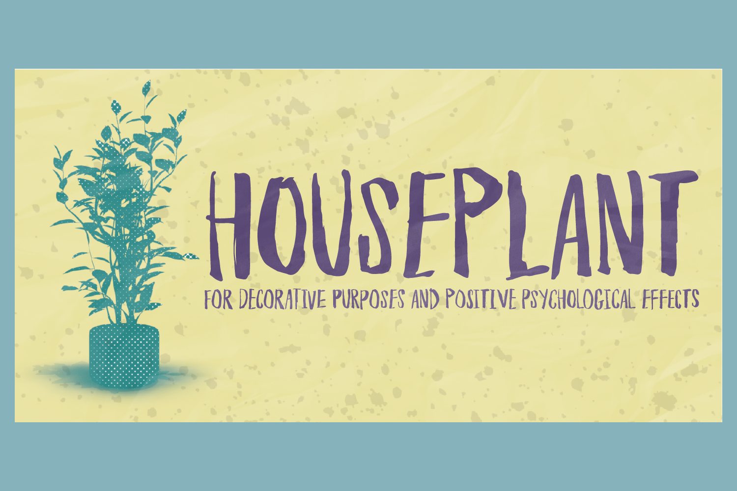 Houseplant example image 1