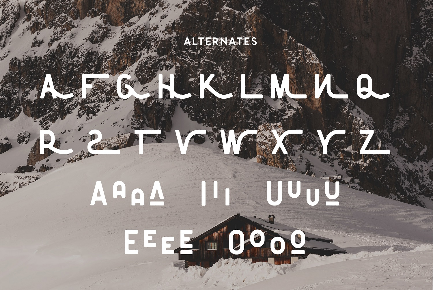 The Florest Typeface example image 9