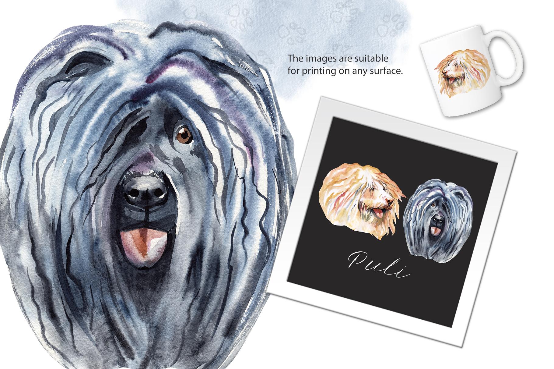 Watercolor dog - Puli example image 2