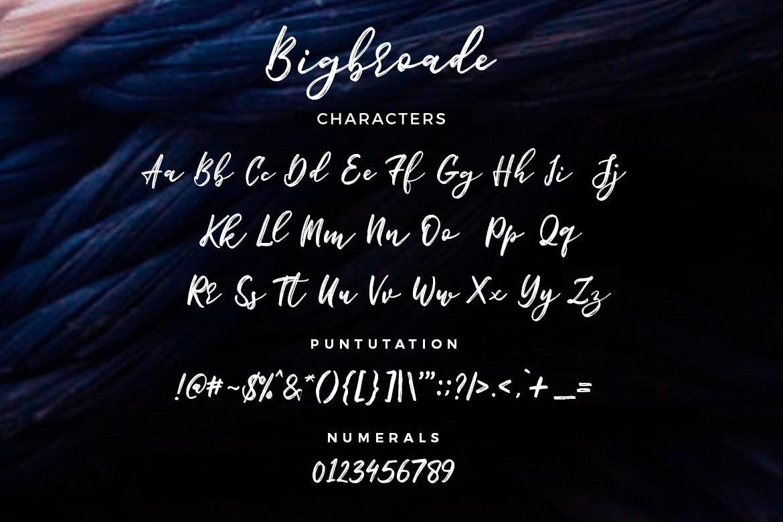 Bigbroade example image 5