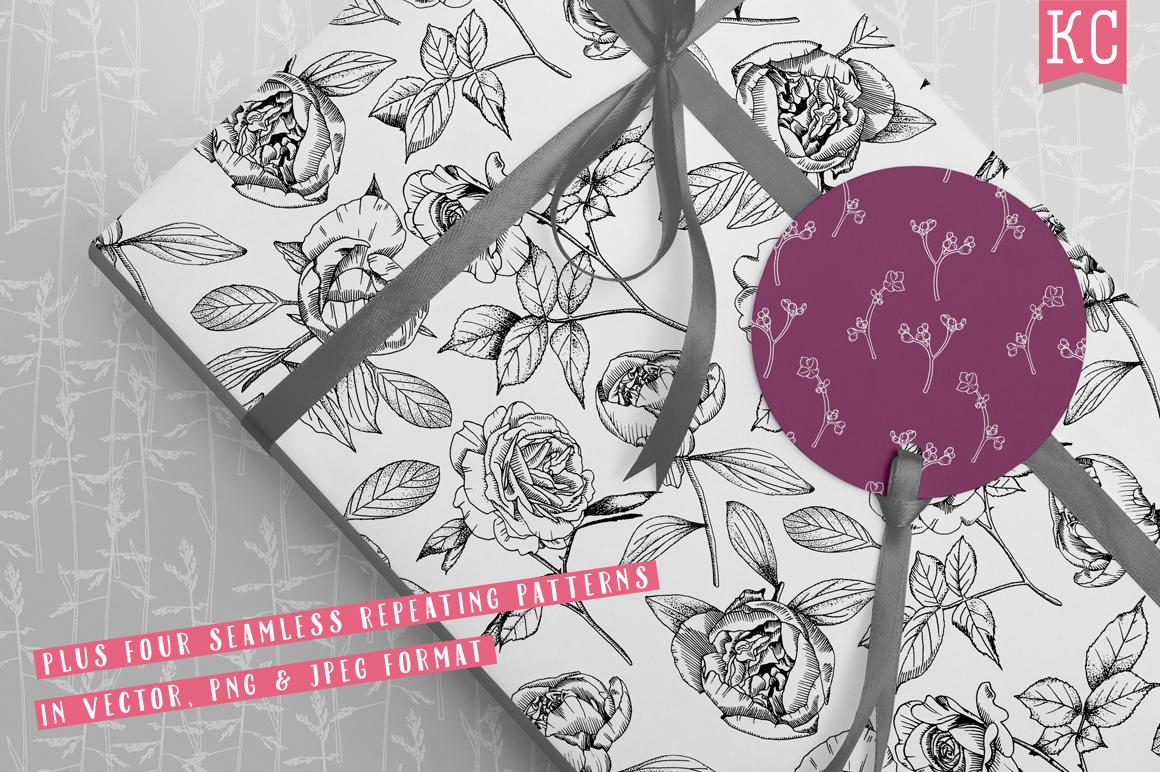 Vector Botanical Bundle Illustrations example image 6