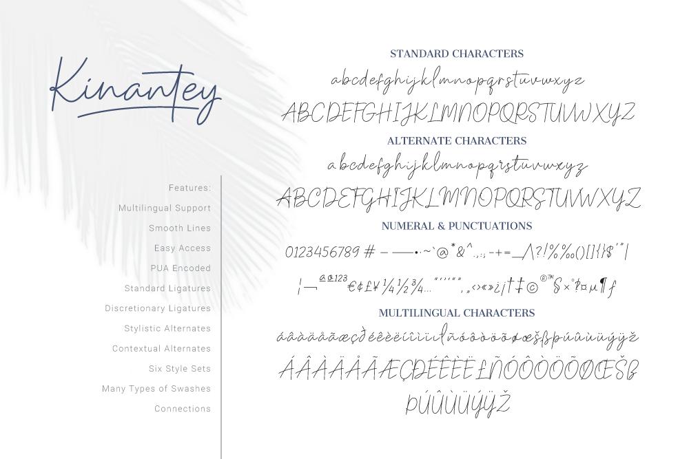 Kinantey - Monoline Signature Font example image 8