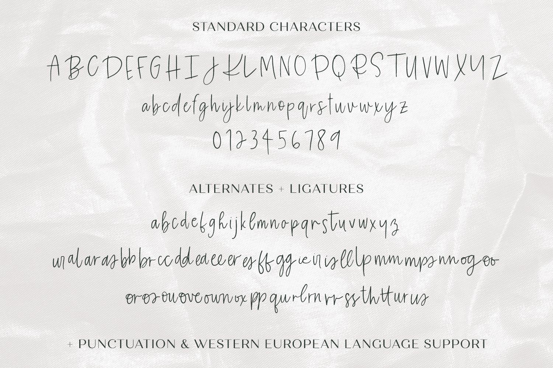 Eireann Signature Script example image 10
