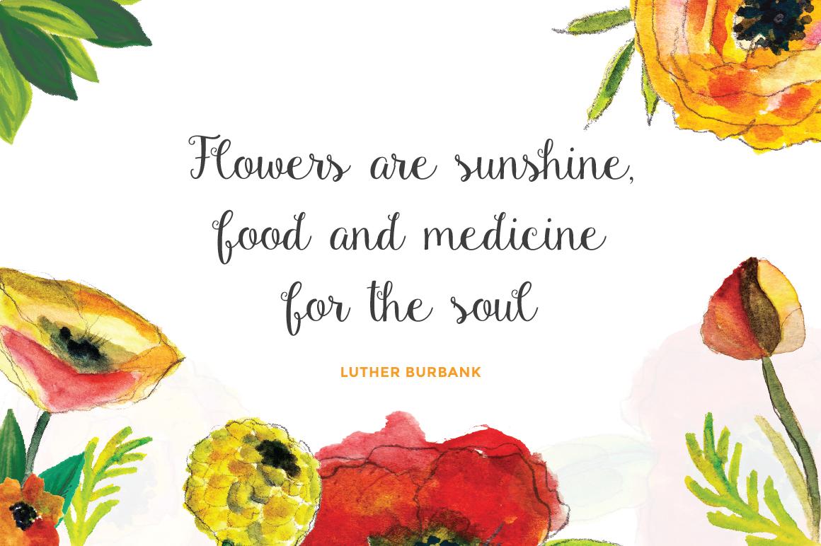 Gardenia + Blooming Bonus example image 4
