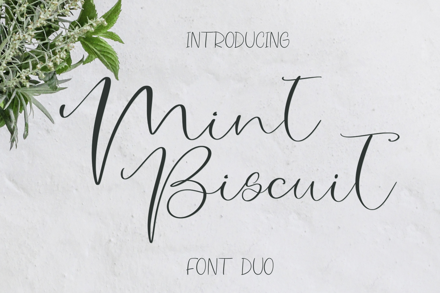 Mint Biscuit Font Duo example image 1