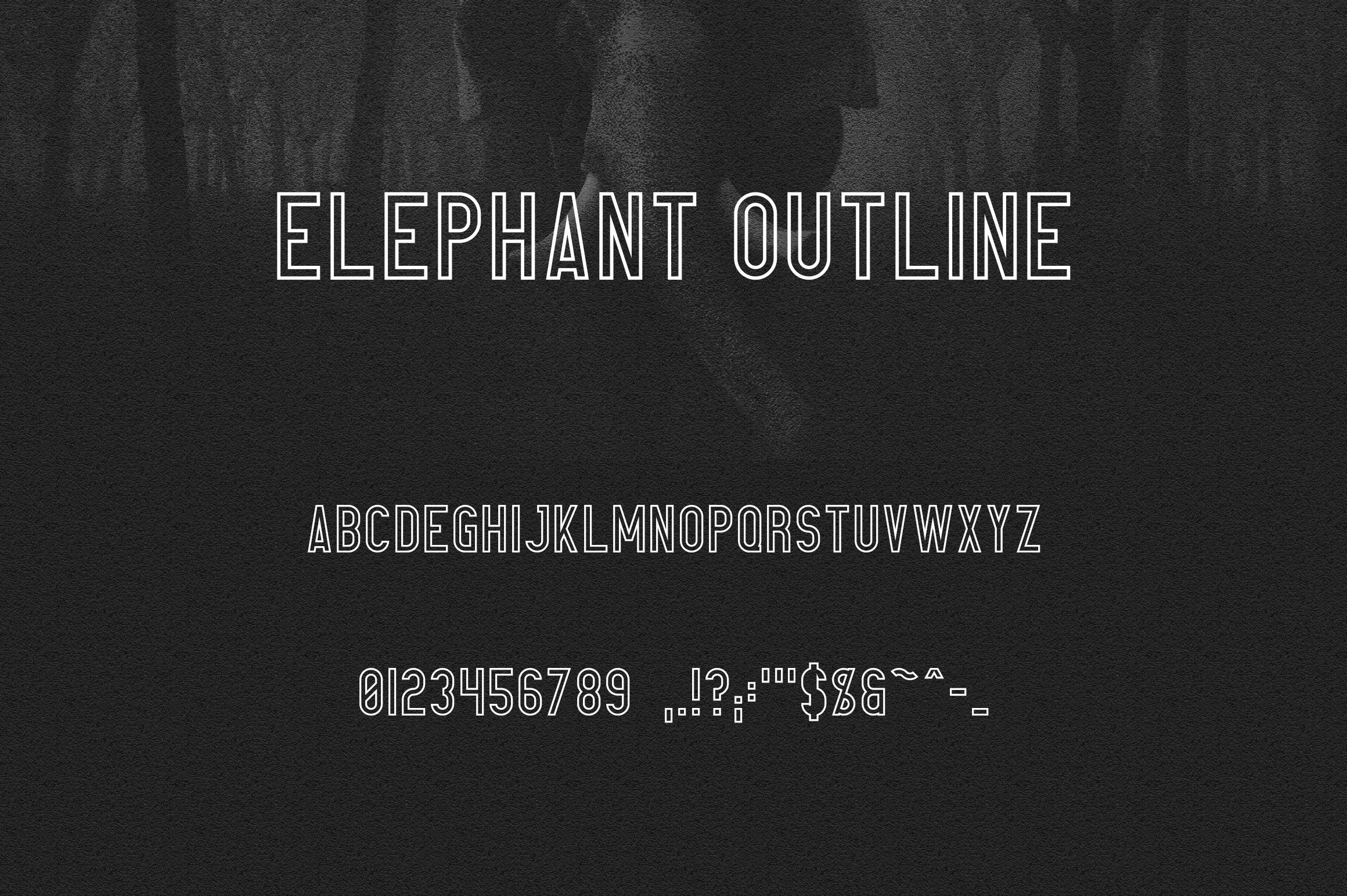Elephant Font Family example image 11