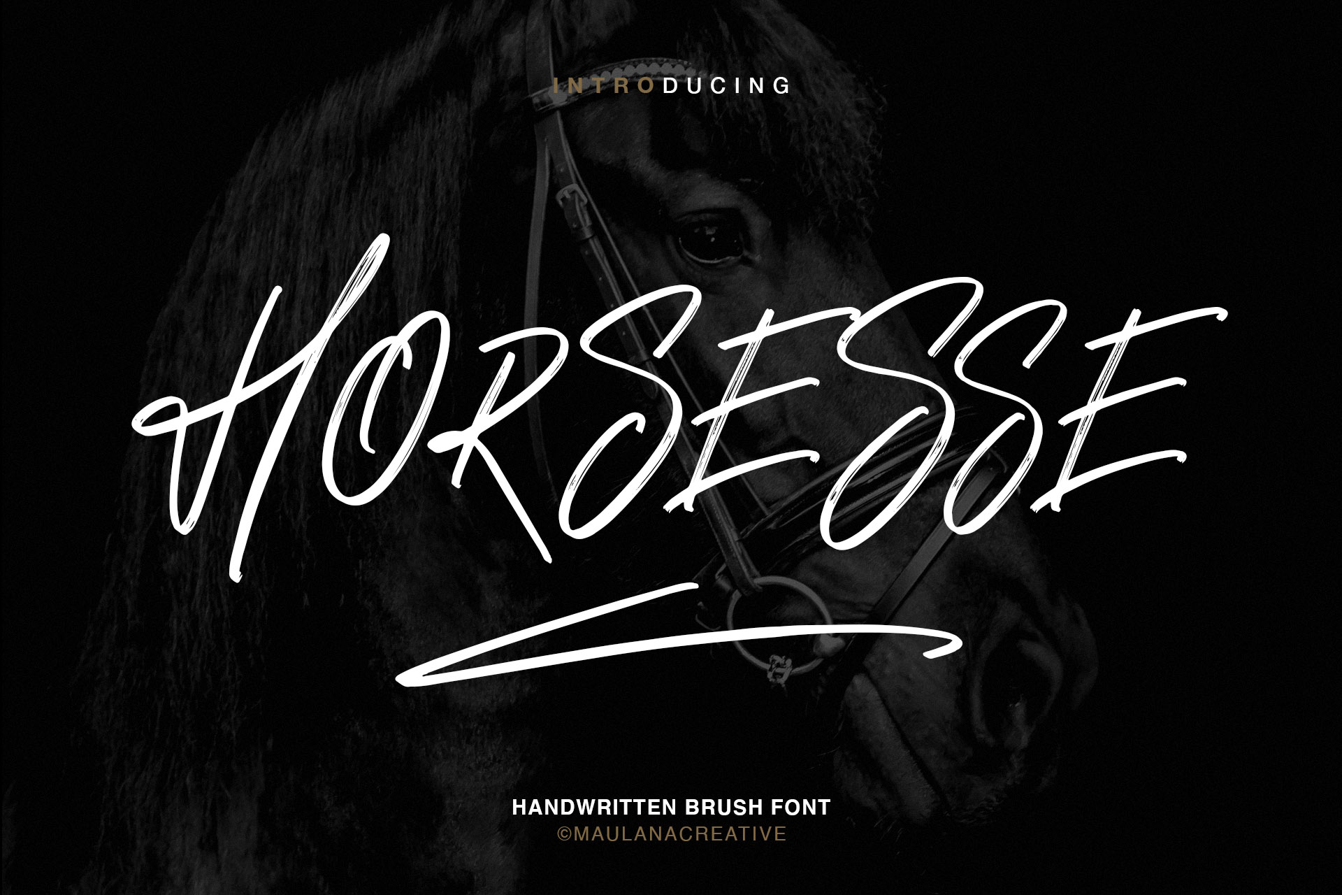 Horsesse Brush Font example image 1